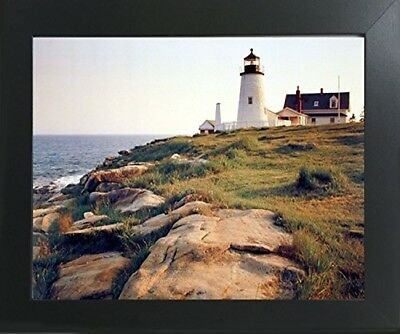 Pemaquid Lighthouse Ocean Cliff Nautical Wall Decor Art Print Framed Picture