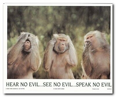 Monkeys Hear No Evil See No Evil Speak No Evil Wall Decor Art Print Poster 16x20