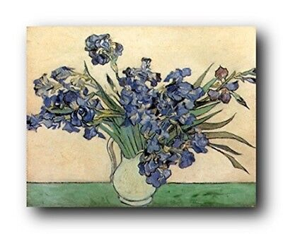 Vincent Van Gogh Iris Flower in vase Floral Wall Decor Art Print Poster (16x20)