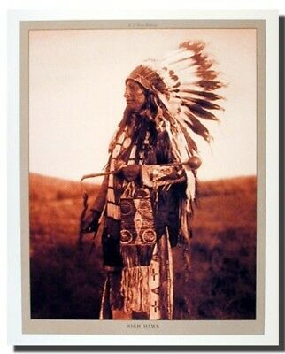 High Hawk Native American Indian Chief Wall Decor Art Print Poster (16x20)