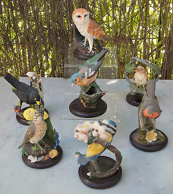 Sept oiseaux collection Hand painted Country bird figure sculptor Andy Pearce @