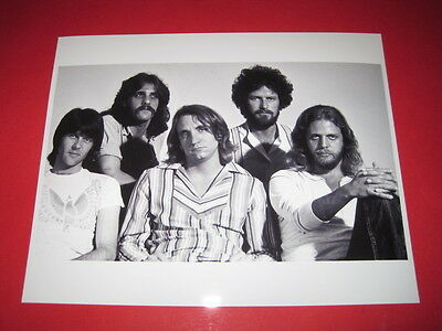 The Eagles 10x8 inch lab-printed photo P/8549