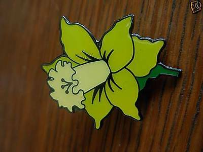 Daffodil collectable pin badge. Welsh. St Davids day March 1st. Almost gone