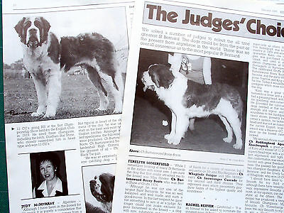 ST SAINT BERNARD BREED KENNEL CLIPPINGS incl Judges Choice article 80s-00s x 30
