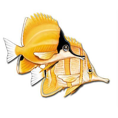 Butterfly Fish Magnet