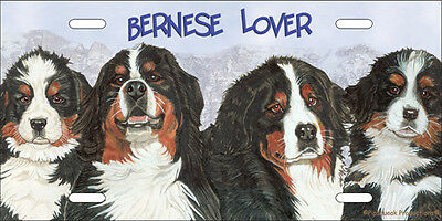 Bernese License Plate