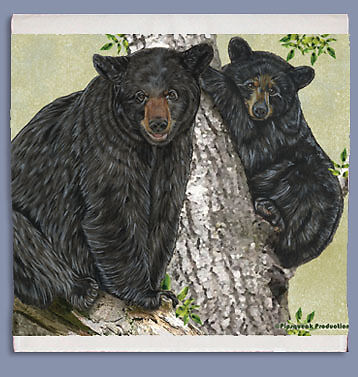 Black Bear Dish Towel