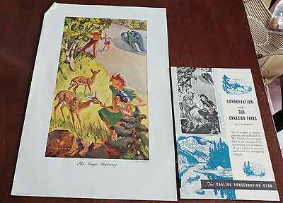 1946 Carling Breweries Conservation Club Picture & Pamphlet - The Kings Highway