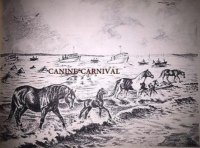 Jeanne Mellin Vintage Horse Art Print Chincoteague Ponies Swimming Chanel Pony