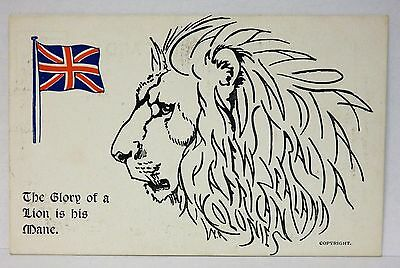 Vintage postcard, The Glory of the Lion is his Mane.