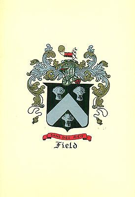 *Great Coat of Arms Field #2 Family Crest genealogy, would look great framed!