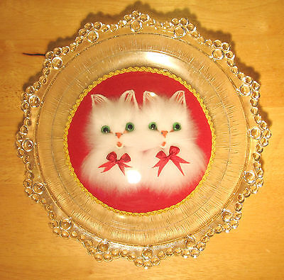 Kitsch Fluffy White Cats Portrait in Hobnail Glass Plate Frame - Vintage 1970s!