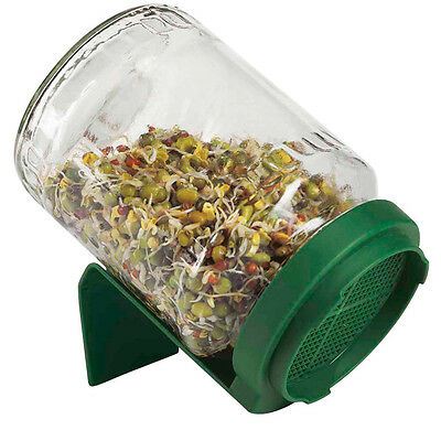 New Biosnacky Glass Sprouting Jar | A.Vogel | Germinating Jar | Home Sprouter