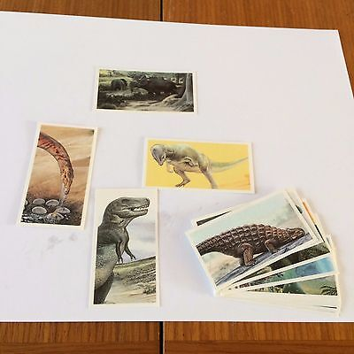 The Dinosaur trail PG Tips cards - 1993 - incomplete set