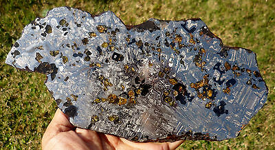AWESOME 637 gram SEYMCHAN METEORITE pallasite -  FULL Slice - great for Jewelry!