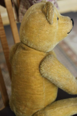 Antique 1920 mohair bear 24 inches..firm straw filled glass eyes