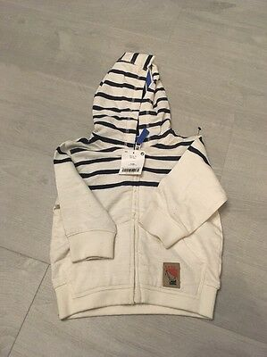 Baby Boys Hoodie Next 6-9 Months