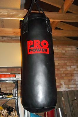 Propower Punchbag with 2 Pairs Of Boxing Gloves