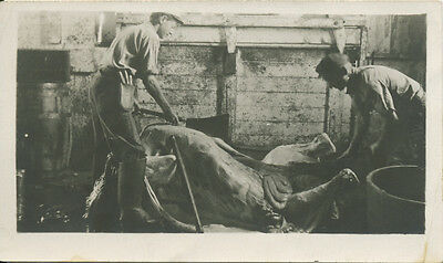 photo BUTCHERS with an animal possibly Idaho mining camp