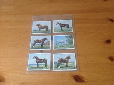 cigarette cards. Players. Types of Horses. Full set. vg condition.