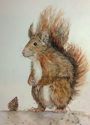 'Food for thought' red squirrel original watercolour painting by Vivian Sophie