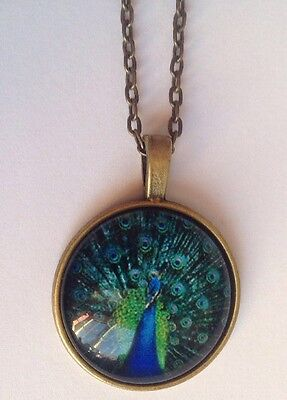 NEW BIRD Peacock Bronze Glass Chain Pendant Necklace.