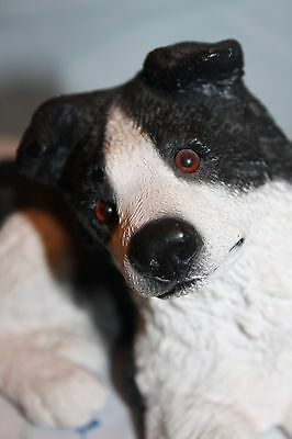 Border Collie Laying Down Figurine Resin Collectible