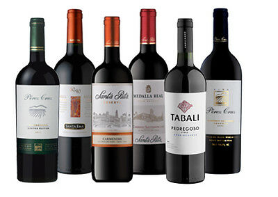 Chilean Favourites Wine Reds 6 pack