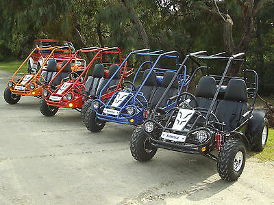 Twister Buggy 150 Offroad Kart BRAND NEW Go Cart