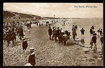 Postcard ~ The Sands WHITLEY BAY Donkeys TYNEMOUTH ~ 1918