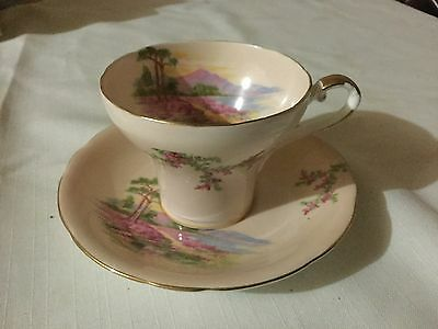 Aynsley Bone China Corset Cup And Saucer  England  Pink/meadow Scene