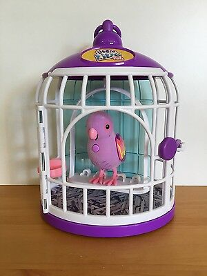 Little Live Pets Toy Bird With Cage Interactive