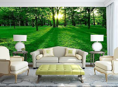 Green Park Wall Mural Photo Wallpaper GIANT WALL DECOR Paper Poster Free Paste