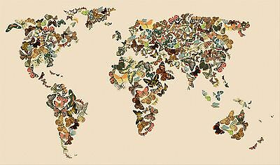 Antique Butterfly Map Of The World Art Print Canvas Art Original Artwork