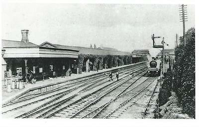 Photo Postcard Size Of Horley's First Railway Station