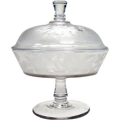 Early Etched Glass Covered Compote with Flamingos - 1880's