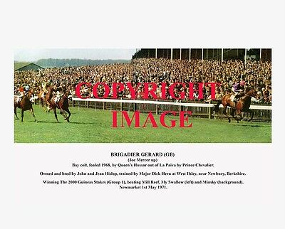 BRIGADIER GERARD winning the 2000 Guineas 1971 - 10x8 captioned colour photo