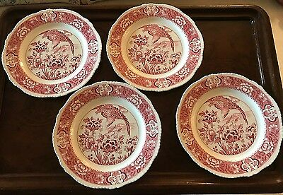 "WOODS WARE Enoch Wood & Sons AQUILA Dinner Plate 10"" Pink Red White"