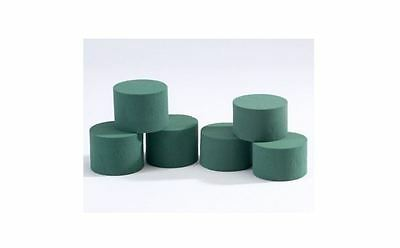 Round Cylinder Wet Foam for Flowers x 20, Florist, Floral, Designs & Displays