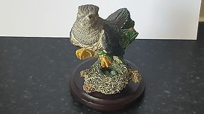 The Country Bird Collection   The Cuckoo