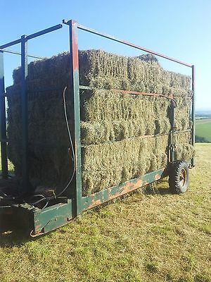 small bale hay for horses