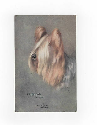 Clydesdale Terrier Tucks Oilette Vintage Dog Postcard Maud West Watson
