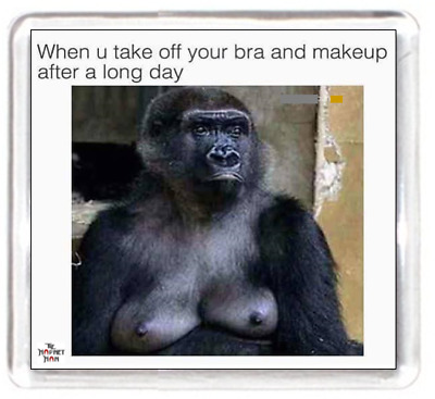 Fridge Magnet Monkey Ape Animal Zoo Bra Makeup Relax Chill Day Naked Nude Humour