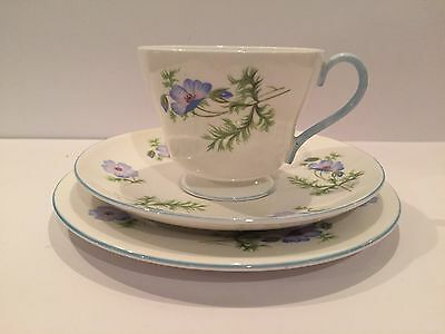 Vintage SHELLEY CHINA Trio - Cup Saucer Sideplate - Blue Flowers #25111