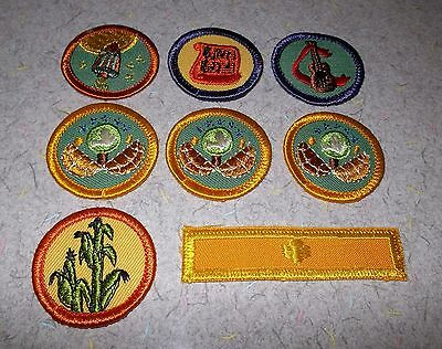 Vintage Lot of 8 Girl Scout or Brownie Embroidered Patches