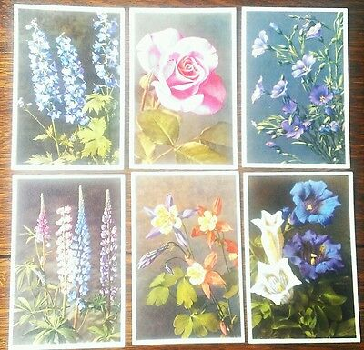 6 x original early postcards of flowers (swiss) No's: 274,290,744,1312,2253,2957