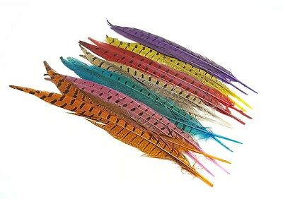 Colour Pheasant Tail Feathers 25-30cm Arts Crafts Hat Costume Wedding Fly UK