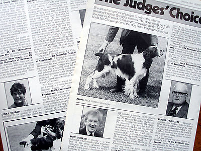 ENGLISH SPRINGER SPANIEL KENNEL CLIPPINGS 50s-00s x40 inc Judges Choice Article