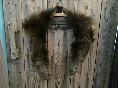 Vintage Otter Fur Collar, perfect for the Naturalist, Hipster, Boho, fashions.