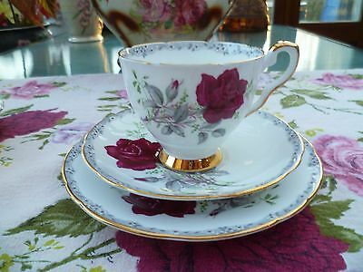 Pretty Vintage Royal Stafford China Trio Tea Cup Saucer Plate Roses To Remember